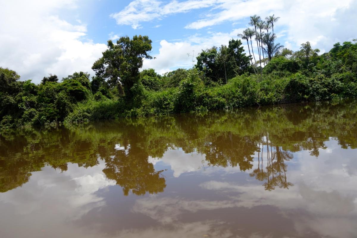 Essequibo River, Guyana -- Karina Noriega