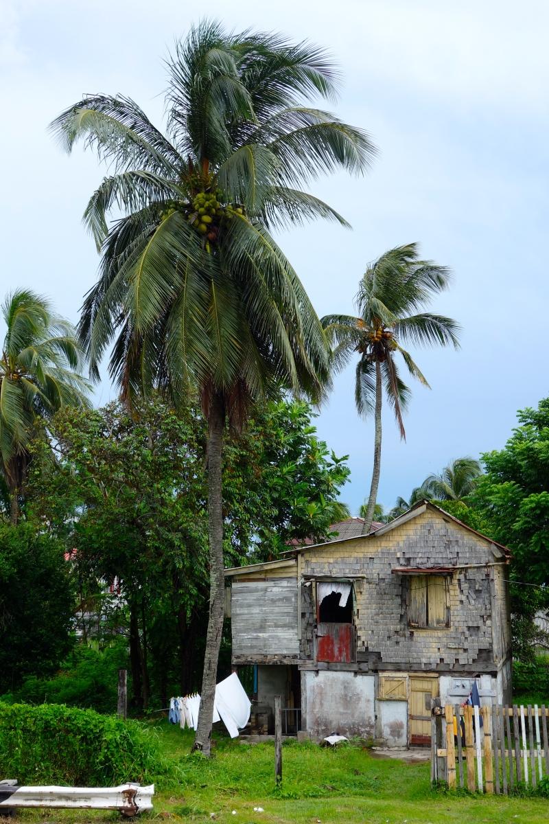 Ramshackle Charm, Georgetown, Guyana -- Karina Noriega