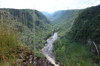 River carves its way through the jungle, Kaeiteur Falls, Guyana -- Karina Noriega