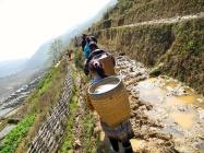 Rice Terrace Pathways, Northern Vietnam -- Karina Noriega