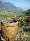 Lam's Textile Basket, Northern Vietnam -- Karina Noriega