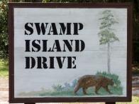 Swamp Island Drive - Okefenokee Wildlife Refuge - Karina Noriega