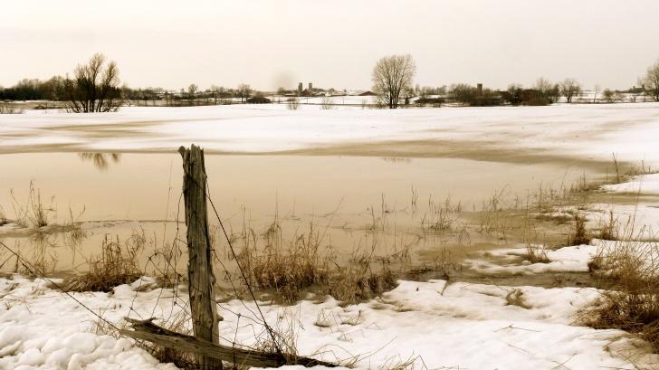 Winter farm -- Karina Noriega