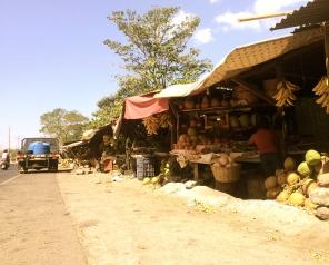 Roadside Market, Escuintla, Guatemala -- Karina Noriega
