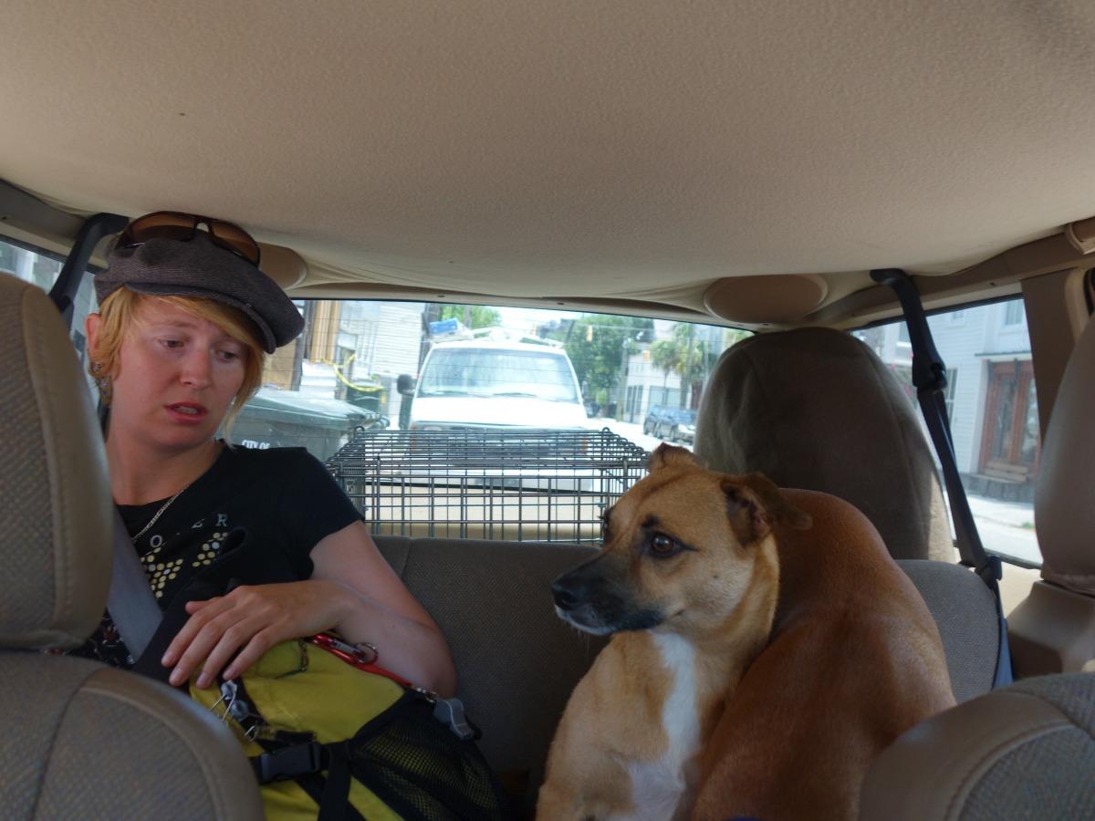 Gone to the dogs, South Carolina, USA - Karina Noriega