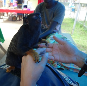 A new friend - Suriname -- Karina Noriega