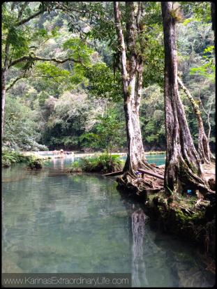 Shallow clarity @ Semuc Champey, Guatemala -- Karina Noriega