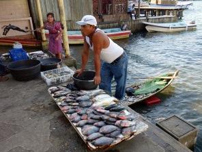 A man sells his mornings catch at the fish market in Fronteras, Rio Dulce, Guatemala -- Karina Noriega