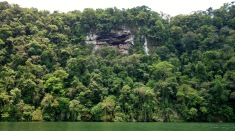 Locals all seem to agree that the image on the cliff rock is a cow. But my money is entirely of whale! Rio Dulce, Guatemala -- Karina Noriega