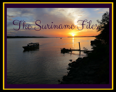 The Suriname Files