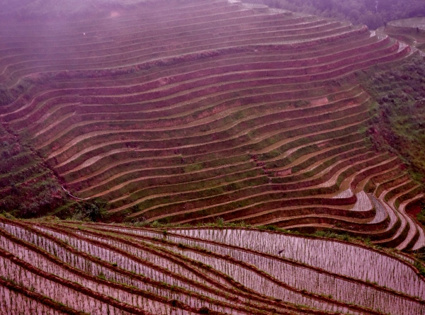 Water filled terraces where the rice grows twice a year provided unforgettable sights and beautiful hikes in the cool, high mountain weather. Ping An, Guanxi, China – Karina Noriega
